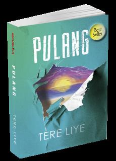 Resensi Novel Pulang Karya Tere Liye